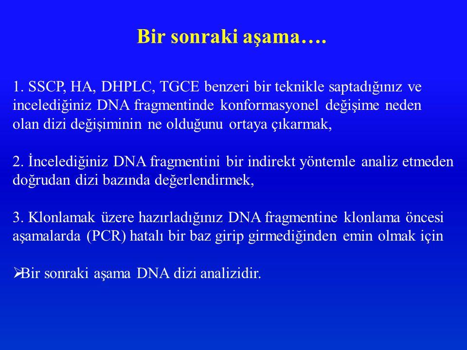 Bir sonraki aşama…. 1. SSCP, HA, DHPLC, TGCE benzeri bir teknikle saptadığınız ve incelediğiniz DNA fragmentinde konformasyonel değişime neden olan di
