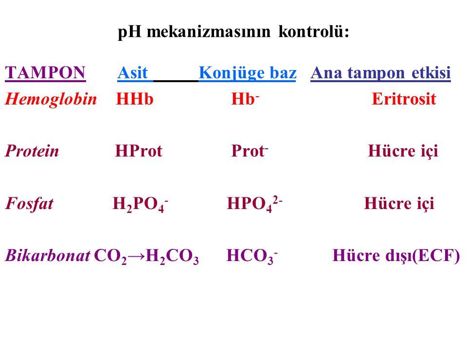 TAMPON Asit Konjüge baz Ana tampon etkisi Hemoglobin HHb Hb - Eritrosit Protein HProt Prot - Hücre içi Fosfat H 2 PO 4 - HPO 4 2- Hücre içi Bikarbonat CO 2 →H 2 CO 3 HCO 3 - Hücre dışı(ECF)