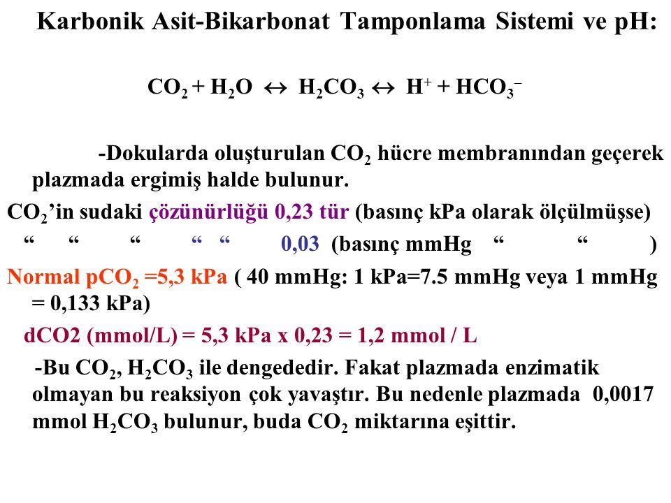 CO 2 + H 2 O  H 2 CO 3  H + + HCO 3 – -Dokularda oluşturulan CO 2 hücre membranından geçerek plazmada ergimiş halde bulunur.