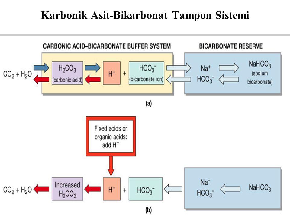 Figure 27.9a, b Karbonik Asit-Bikarbonat Tampon Sistemi