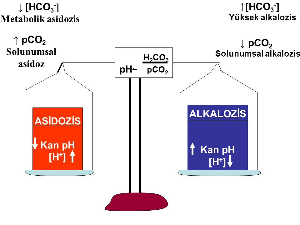 H 2 CO 3 pH ~ pCO 2 ASİDOZİS Kan pH [H + ] ALKALOZİS Kan pH [H + ]  [HCO 3 - ] Yüksek alkalozis ↓ pCO 2 Solunumsal alkalozis ↓ [HCO 3 - ] Metabolik asidozis ↑ pCO 2 Solunumsal asidoz