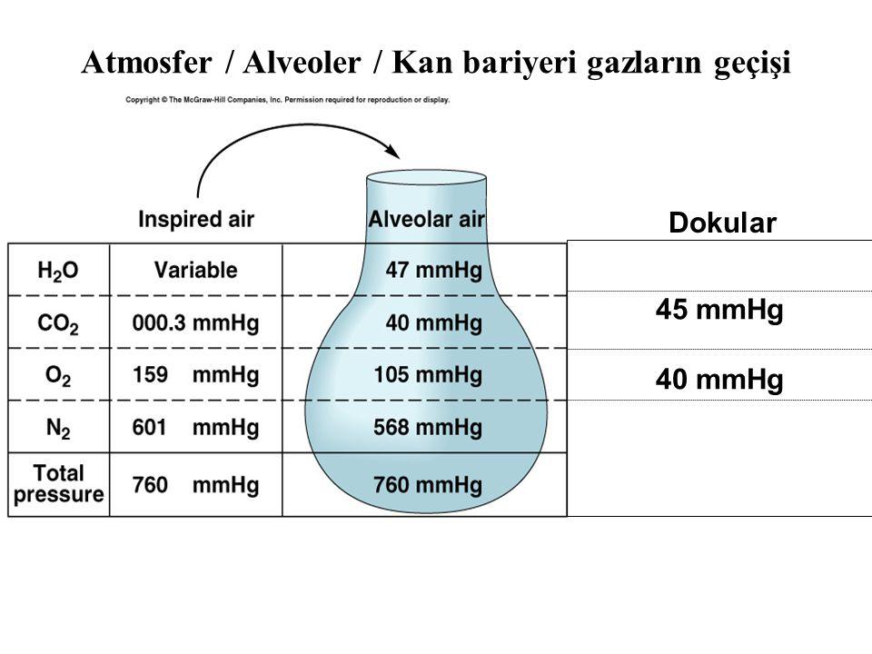Atmosfer / Alveoler / Kan bariyeri gazların geçişi 45 mmHg 40 mmHg Dokular
