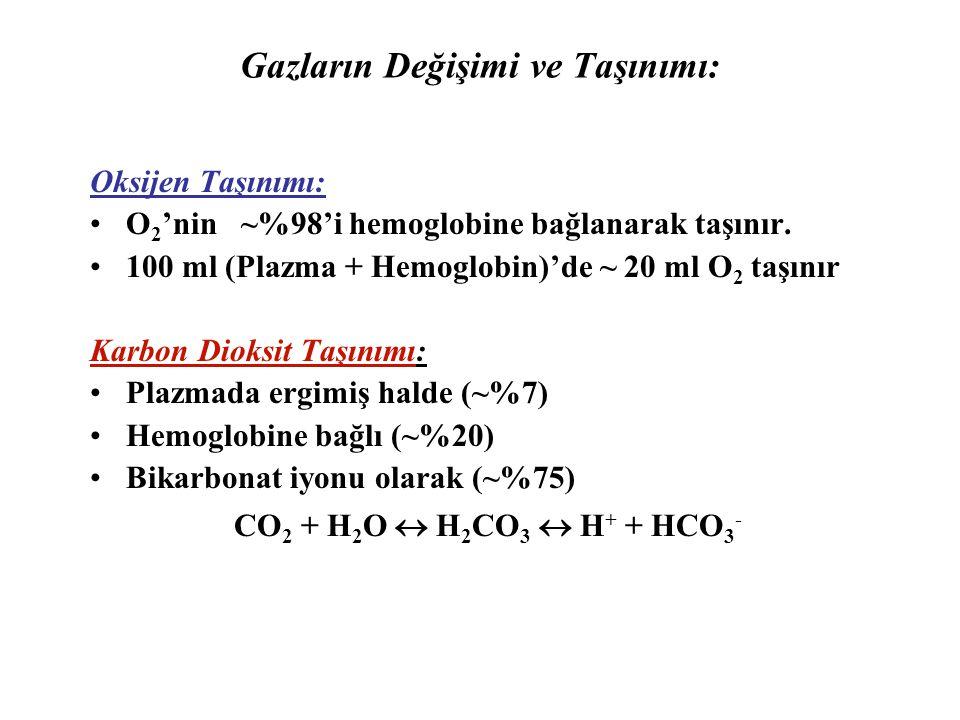 Gazların Değişimi ve Taşınımı: Oksijen Taşınımı: O 2 'nin ~%98'i hemoglobine bağlanarak taşınır.