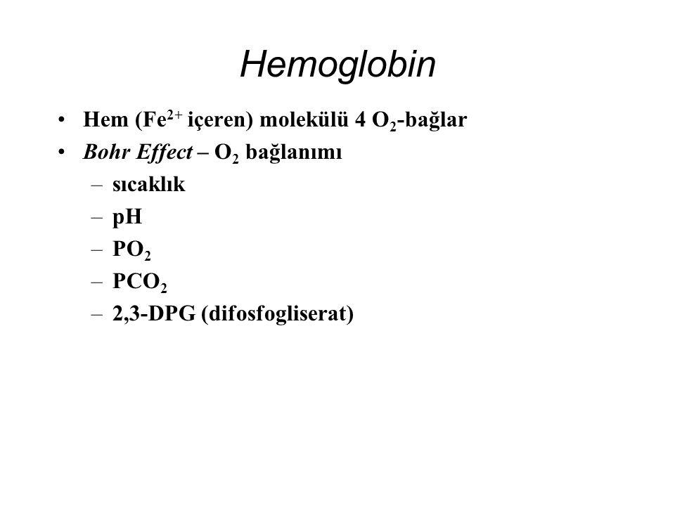 Hemoglobin Hem (Fe 2+ içeren) molekülü 4 O 2 -bağlar Bohr Effect – O 2 bağlanımı –sıcaklık –pH –PO 2 –PCO 2 –2,3-DPG (difosfogliserat)