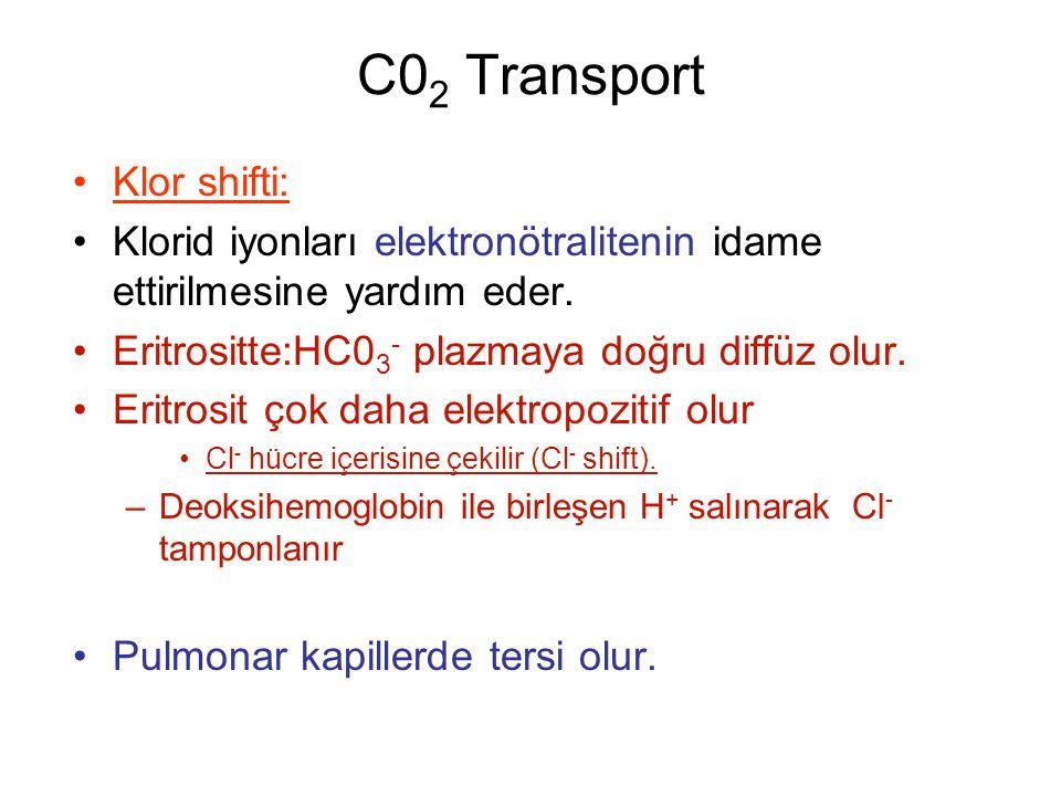 C0 2 Transport Klor shifti: Klorid iyonları elektronötralitenin idame ettirilmesine yardım eder.