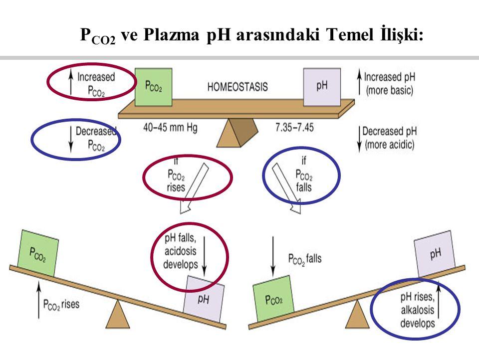 P CO2 ve Plazma pH arasındaki Temel İlişki: