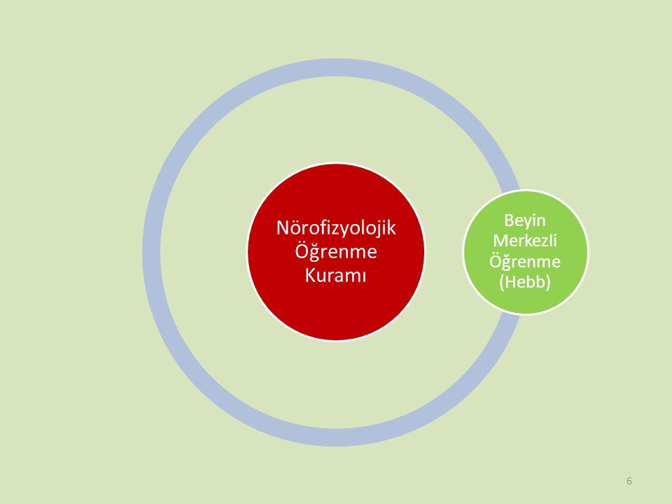 Nörofizyolojik Öğrenme Kuramı Beyin Merkezli Öğrenme (Hebb) 6