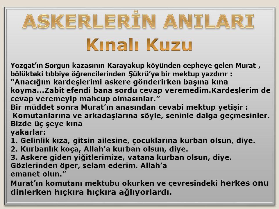 """Yozgat'ın Sorgun kazasının Karayakup köyünden cepheye gelen Murat, bölükteki tıbbiye öğrencilerinden Şükrü'ye bir mektup yazdırır : """"Anacığım kardeşle"""