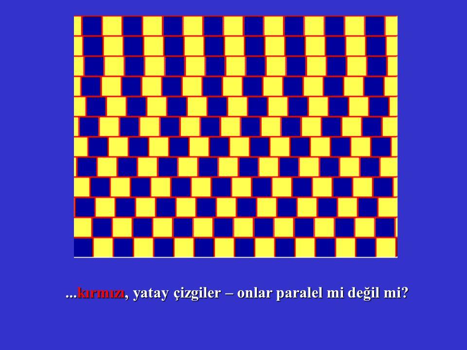 ...kırmızı, yatay çizgiler – onlar paralel mi değil mi?