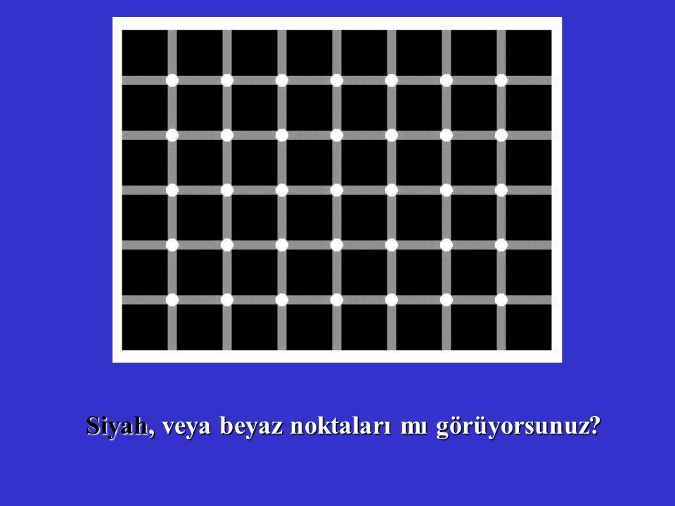 Siyah, veya beyaz noktaları mı görüyorsunuz?