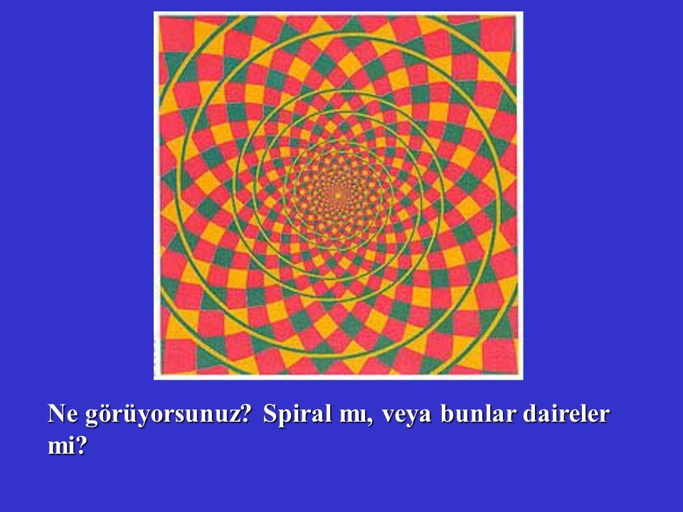 Ne görüyorsunuz? Spiral mı, veya bunlar daireler mi?