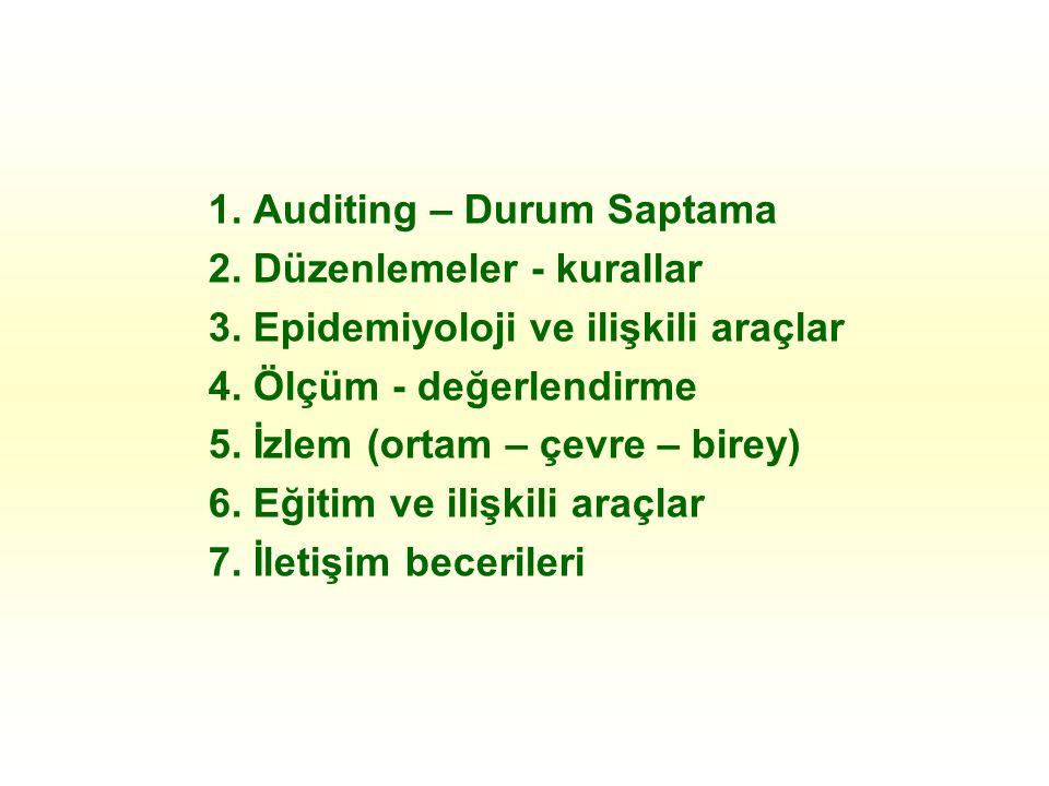 1. Auditing – Durum Saptama 2. Düzenlemeler - kurallar 3.
