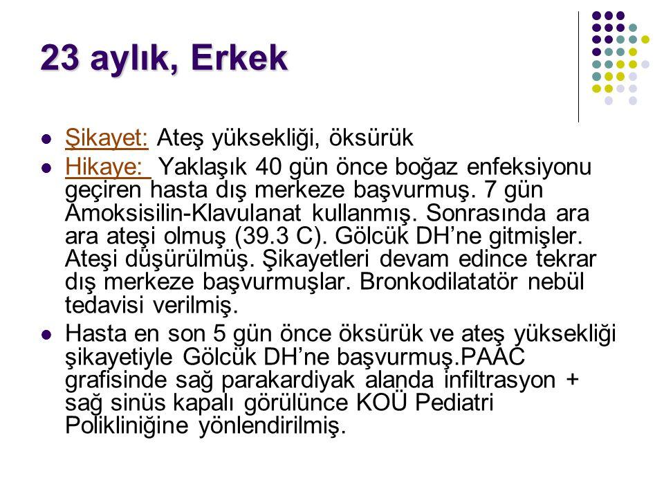 2002-2004 yılları arasında gerçekleştirilen Türkiye Hastalık Yükü Çalışması' na göre solunum yolu infeksiyonları; en sık ikinci ölüm nedenidir.
