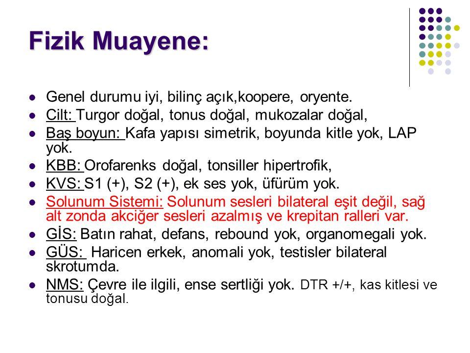 Laboratuvar: WBC: 14000/mm³ ANS: 6,750/mm³ Hb: 13.3g/dl PLT: 326,000/mm³ Sedim: 62 mm/saat CRP: 2.28 mg/dl BUN: 9 mg/dl Kreatinin: 0,43 mg/dl Glukoz: 100 mg/dl AST: 30 U/L ALT: 8 U/L Na: 140 mEq/L K: 5.47 mEq/L Albümin: 4.34 g/dL