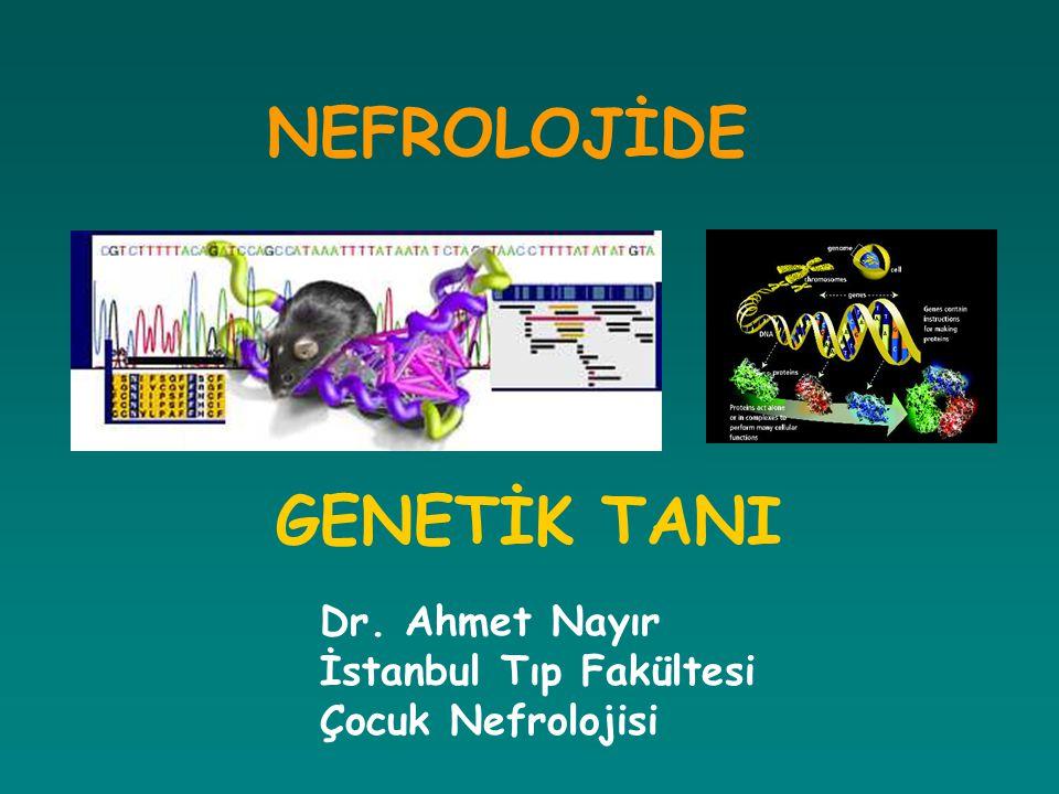 NEFROLOJİDE GENETİK TANI Dr. Ahmet Nayır İstanbul Tıp Fakültesi Çocuk Nefrolojisi