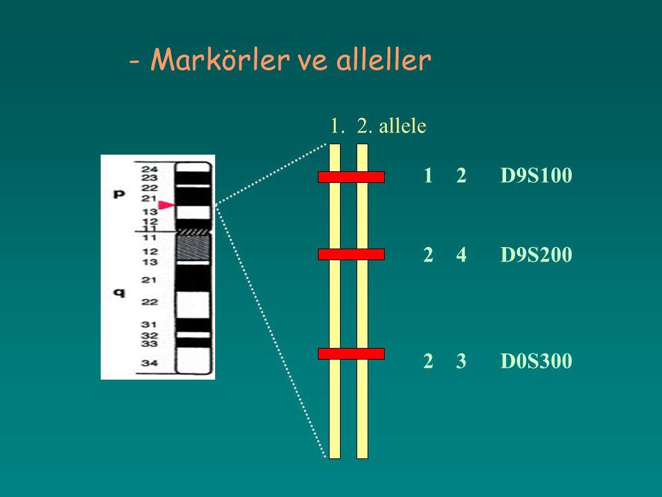 - Markörler ve alleller 1. 2. allele 12 D9S100 24 D9S200 23 D0S300