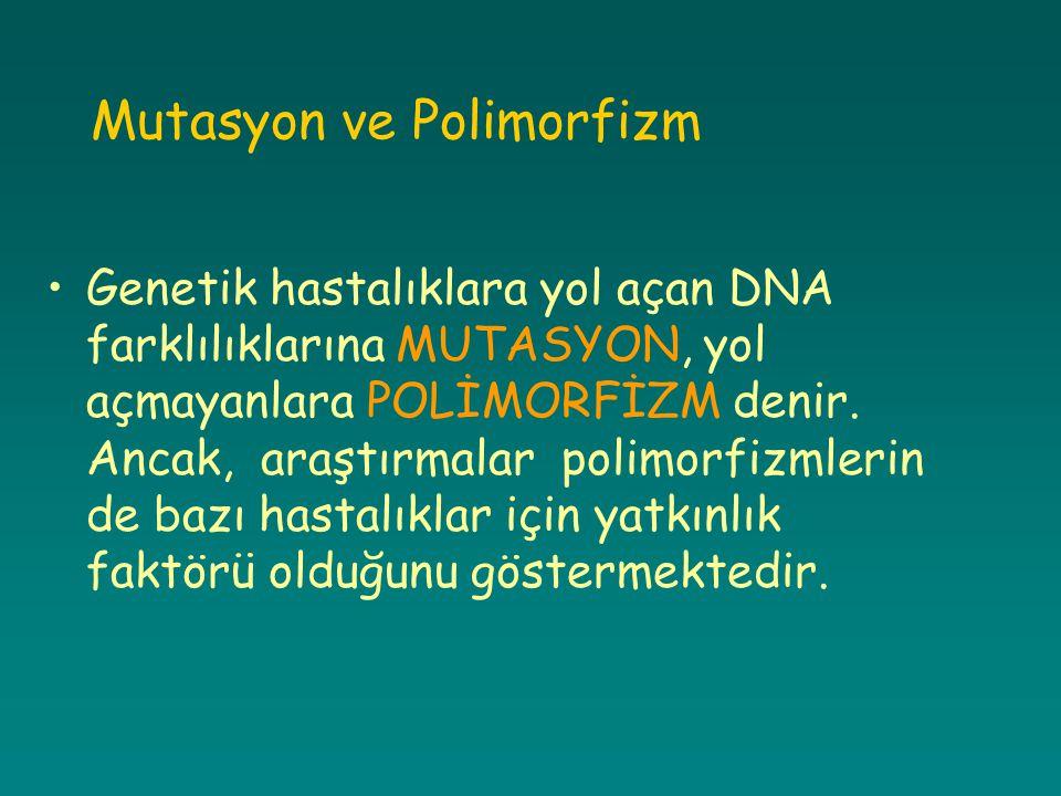 Mutasyon ve Polimorfizm Genetik hastalıklara yol açan DNA farklılıklarına MUTASYON, yol açmayanlara POLİMORFİZM denir. Ancak, araştırmalar polimorfizm