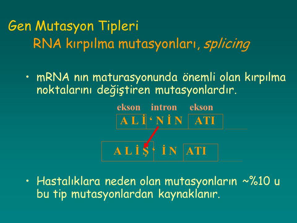 Gen Mutasyon Tipleri RNA kırpılma mutasyonları, splicing mRNA nın maturasyonunda önemli olan kırpılma noktalarını değiştiren mutasyonlardır. A L İ ' N