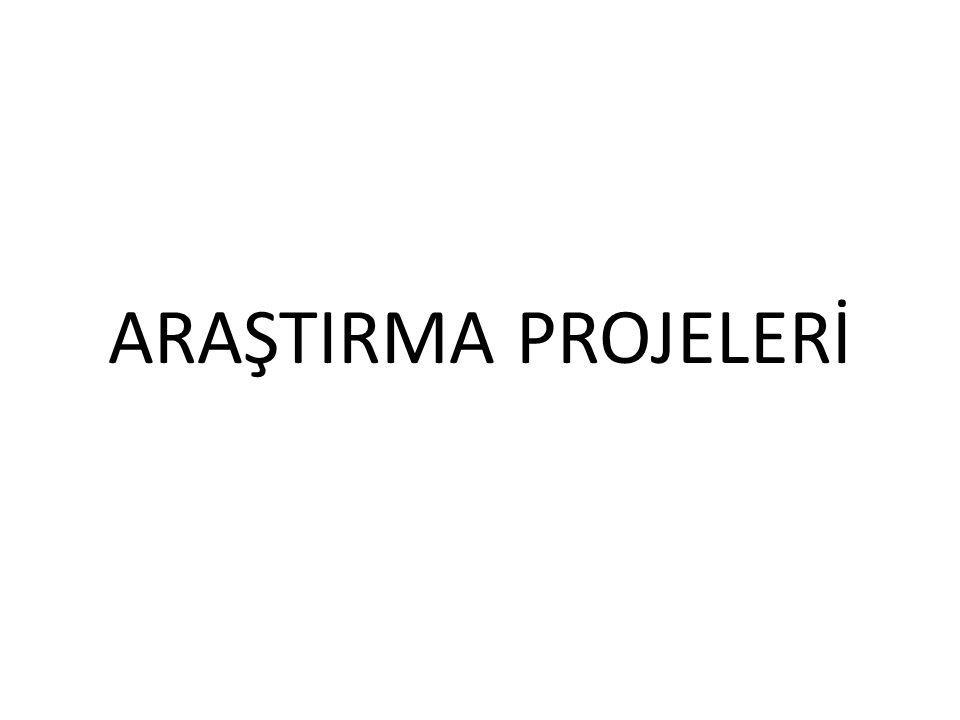 ARAŞTIRMA PROJELERİ