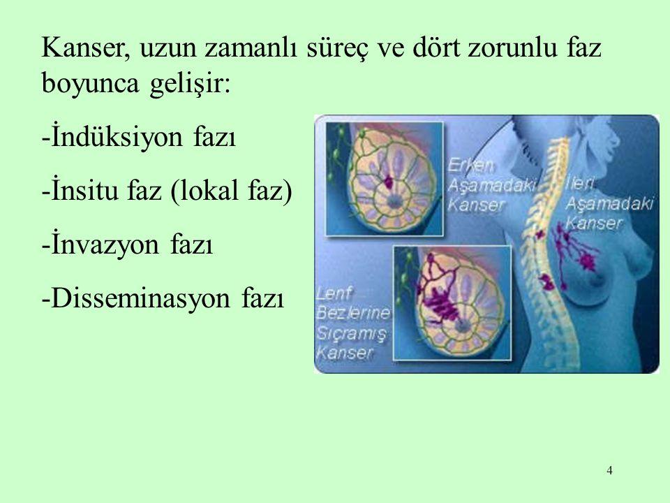 4 Kanser, uzun zamanlı süreç ve dört zorunlu faz boyunca gelişir: -İndüksiyon fazı -İnsitu faz (lokal faz) -İnvazyon fazı -Disseminasyon fazı
