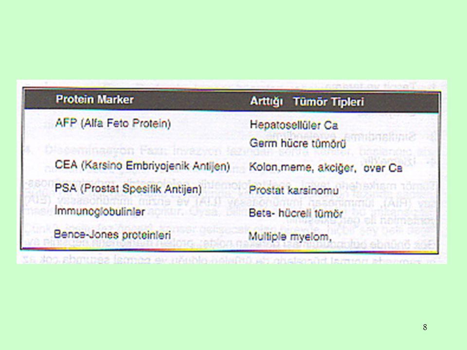 19 CA 19 - 9 Uygulama alanları Pankreas kanseri Kolorektal kanseri Gastrik kanser Safra yolları kanseri Diğer yükselme sebepleri Sarılık Mide, bağırsak kanalında, pankresada, karaciğerde, safra kesesinde iyi huylu urlar Diabetik nefropati Romatizmal hastalıklar Yumurtalık kanseri Meme kanseri