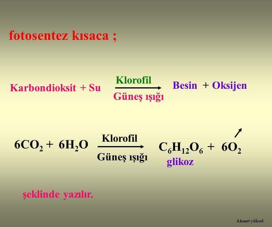fotosentez kısaca ; Karbondioksit + Klorofil Besin Güneş ışığı 6CO 2 + C 6 H 12 O 6 + Klorofil Güneş ışığı Su +Oksijen 6H 2 O 6O 2 glikoz şeklinde yaz
