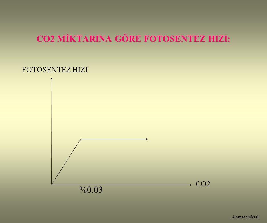 CO2 MİKTARINA GÖRE FOTOSENTEZ HIZI: %0.03 CO2 FOTOSENTEZ HIZI Ahmet yüksel