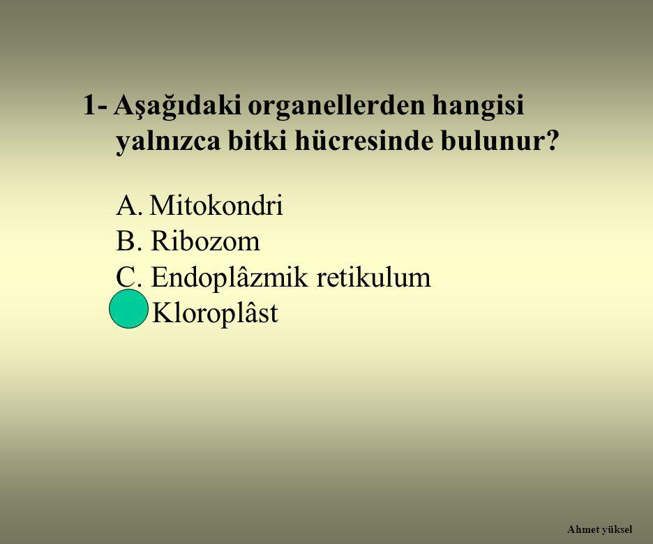 1- Aşağıdaki organellerden hangisi yalnızca bitki hücresinde bulunur? A.Mitokondri B. Ribozom C. Endoplâzmik retikulum D. Kloroplâst Ahmet yüksel