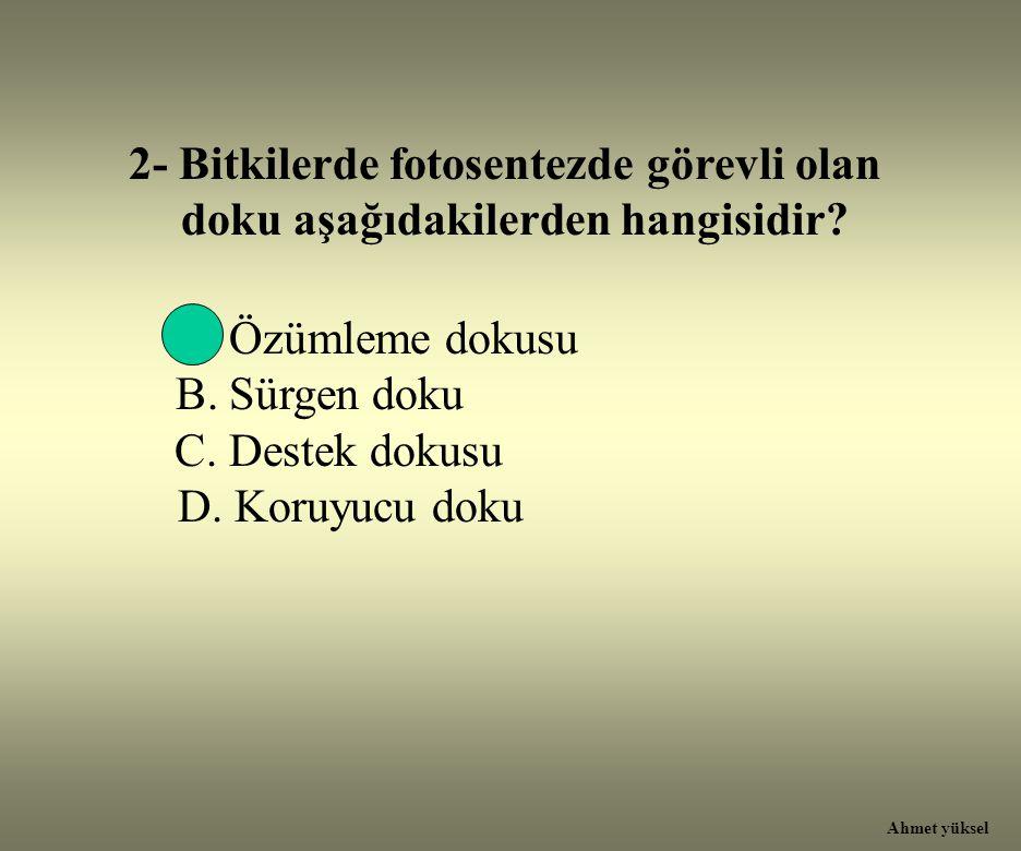 2- Bitkilerde fotosentezde görevli olan doku aşağıdakilerden hangisidir? A. Özümleme dokusu B. Sürgen doku C. Destek dokusu D. Koruyucu doku Ahmet yük