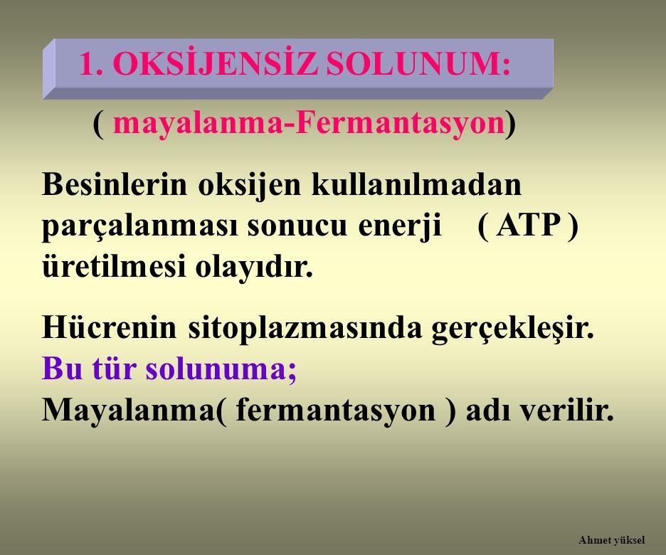 1. OKSİJENSİZ SOLUNUM: ( mayalanma-Fermantasyon) Besinlerin oksijen kullanılmadan parçalanması sonucu enerji ( ATP ) üretilmesi olayıdır. Hücrenin sit