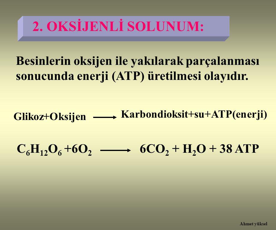 Besinlerin oksijen ile yakılarak parçalanması sonucunda enerji (ATP) üretilmesi olayıdır. Glikoz+Oksijen Karbondioksit+su+ATP(enerji) C 6 H 12 O 6 +6O