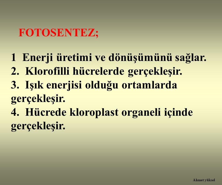 FOTOSENTEZ; 1 Enerji üretimi ve dönüşümünü sağlar. 2. Klorofilli hücrelerde gerçekleşir. 3. Işık enerjisi olduğu ortamlarda gerçekleşir. 4. Hücrede kl