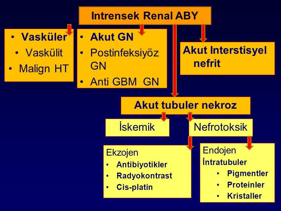 Vasküler Vaskülit Malign HT Akut GN Postinfeksiyöz GN Anti GBM GN Intrensek Renal ABY Akut Interstisyel nefrit Akut tubuler nekroz İskemikNefrotoksik