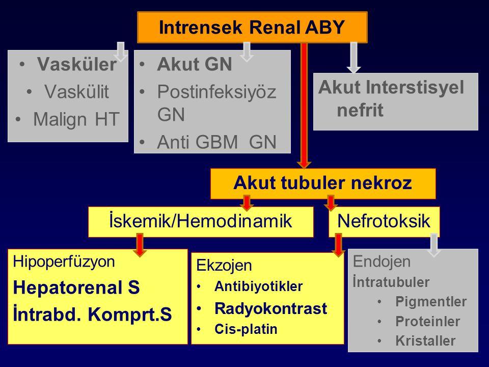 İLACA İKİNCİL ABY Akut Tubuler Hasar Aminoglikozidler Bazı sefalosporinler Amfoterisin B Akut Interstisyel nefrit Tüm ilaçlar Otoregülasyon bozukluğu ACE inhibitörleri AII reseptör blokerleri NSAID Radyokontrast ajanlar