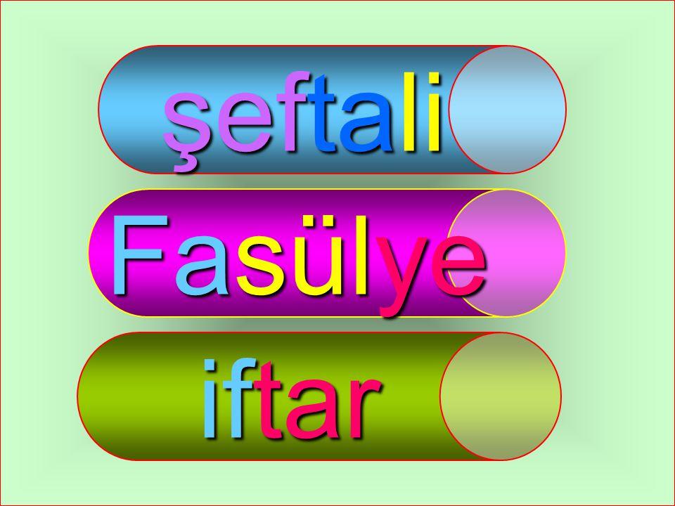 09.04.2015ELİF ÖZLEM TOPUZ15 fo ya fin can fay da FISTIK