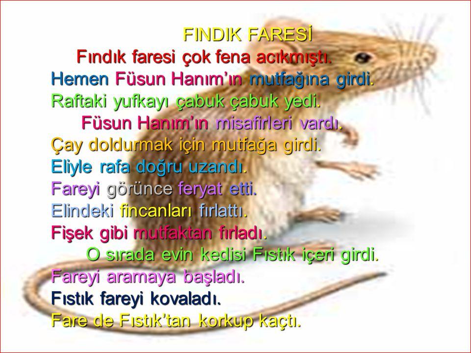 09.04.2015ELİF ÖZLEM TOPUZ19