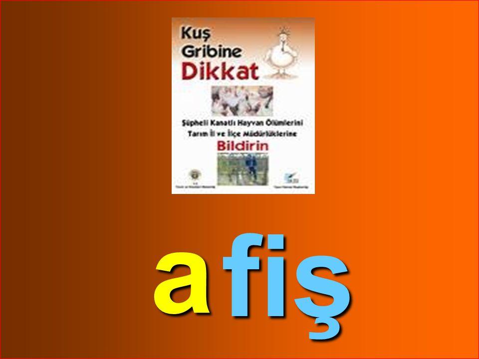 09.04.2015ELİF ÖZLEM TOPUZ61 fa kir