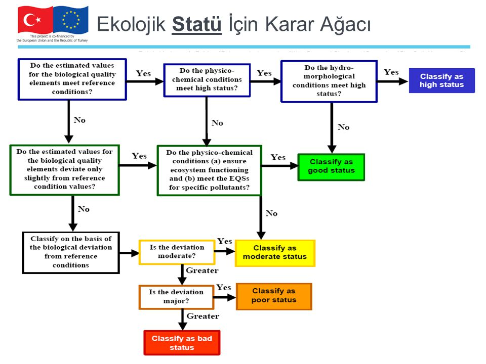 Ekolojik Statü İçin Karar Ağacı