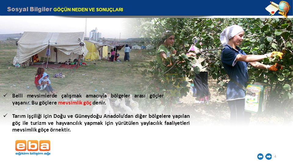 Sosyal Bilgiler GÖÇÜN NEDEN VE SONUÇLARI 4 Belli mevsimlerde çalışmak amacıyla bölgeler arası göçler yaşanır.