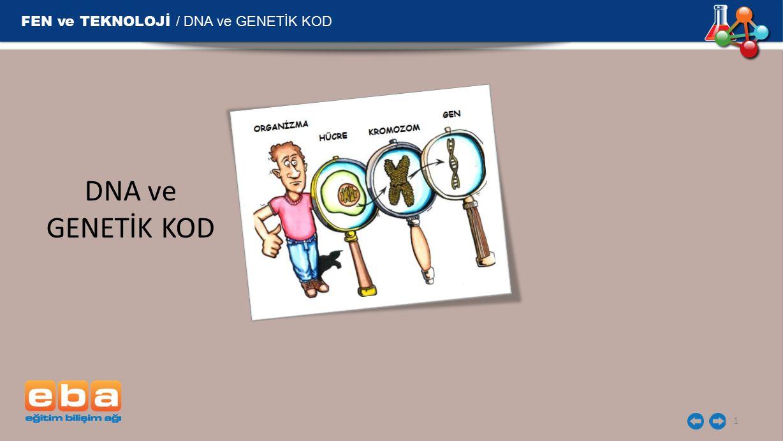FEN ve TEKNOLOJİ / DNA ve GENETİK KOD DNA ve GENETİK KOD 1