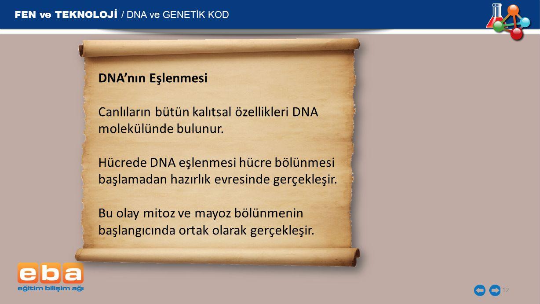 FEN ve TEKNOLOJİ / DNA ve GENETİK KOD 12 DNA'nın Eşlenmesi Canlıların bütün kalıtsal özellikleri DNA molekülünde bulunur. Hücrede DNA eşlenmesi hücre