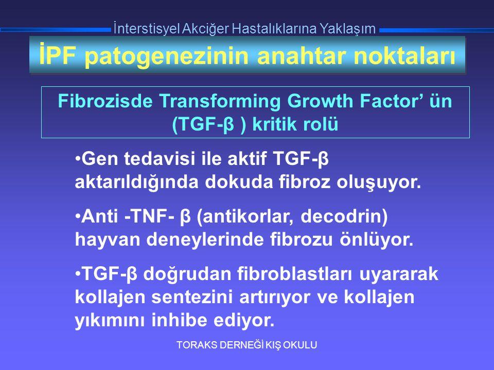 TORAKS DERNEĞİ KIŞ OKULU İnterstisyel Akciğer Hastalıklarına Yaklaşım İPF patogenezinin anahtar noktaları Gen tedavisi ile aktif TGF-β aktarıldığında
