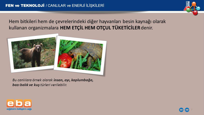 FEN ve TEKNOLOJİ / CANLILAR ve ENERJİ İLİŞKİLERİ 7 Hem bitkileri hem de çevrelerindeki diğer hayvanları besin kaynağı olarak kullanan organizmalara HE