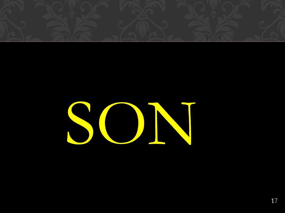 SON 17