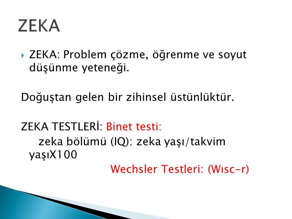  ZEKA: Problem çözme, öğrenme ve soyut düşünme yeteneği.