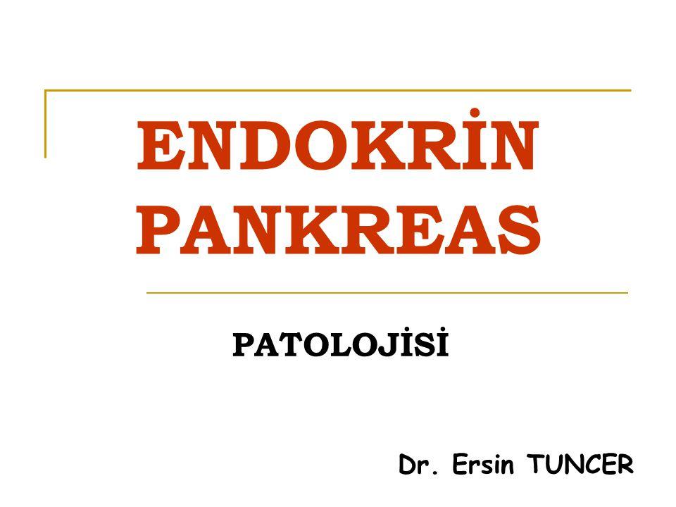 ENDOKRİN PANKREAS LANGERHANS adacıklarından oluşur Pankreasın % 1 i (Doğumda daha yüksek) Pankreasda yaklaşık 1.000.000 adacık vardır Yuvarlak, sıkı, damarlanması fazla, bağ dokusu az olan adacıklar şeklinde Adacıkların çapı 0.1 to 0.2 mm olup, endodermal orjinlidir