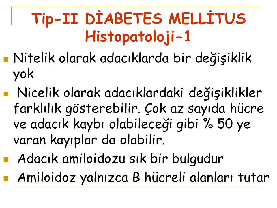 Tip-II DİABETES MELLİTUS Histopatoloji-1 Nitelik olarak adacıklarda bir değişiklik yok Nicelik olarak adacıklardaki değişiklikler farklılık gösterebilir.