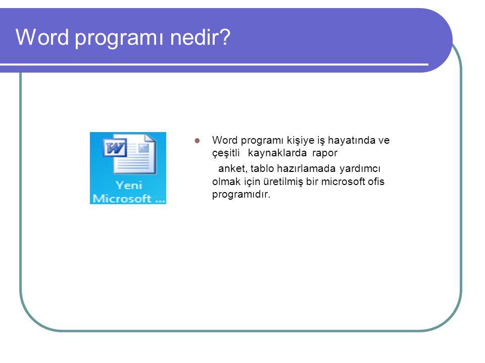 Word programı nedir.