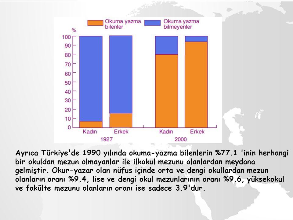 Ayrıca Türkiye'de 1990 yılında okuma-yazma bilenlerin %77.1 'inin herhangi bir okuldan mezun olmayanlar ile ilkokul mezunu olanlardan meydana gelmişti