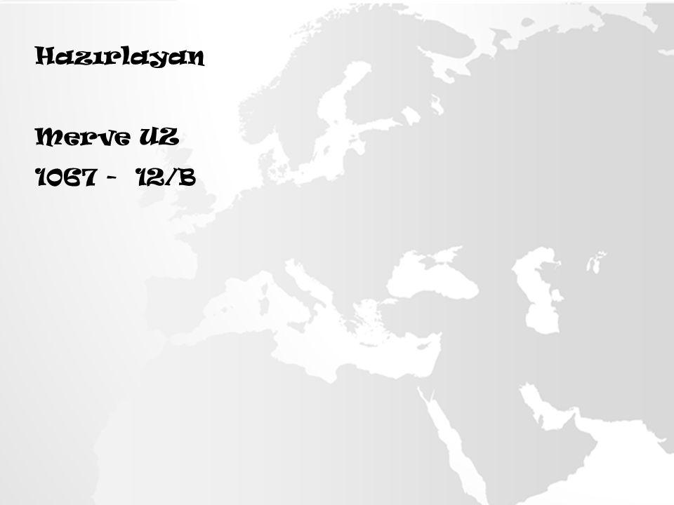 Hazırlayan Merve UZ 1067 - 12/B